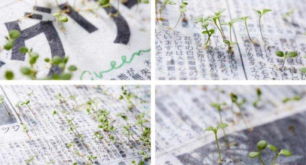 روزنامه ماينيچى ژاپن از اين به بعد با كاغذ حاوى تخم گل وگياه چاپ ميشود. بعد از خواندن و كاشتن، جوهر روزنامه تقويتكننده گياه خواهد بود