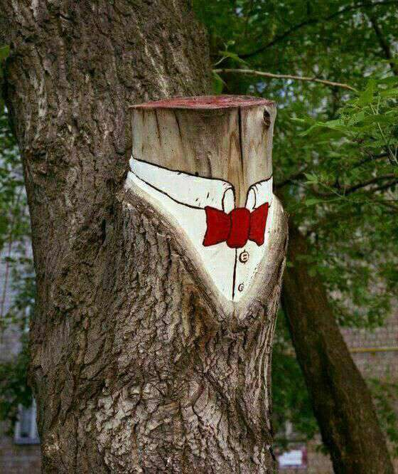 اعتراض خلاقانه یک هنرمند به قطع درختان