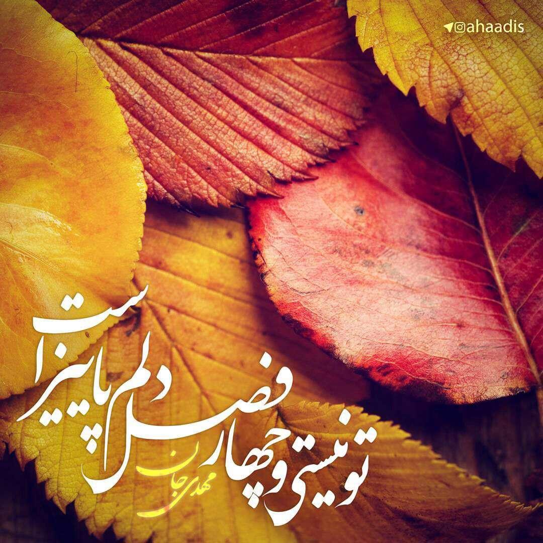 چهار فصل دلم پاییز است