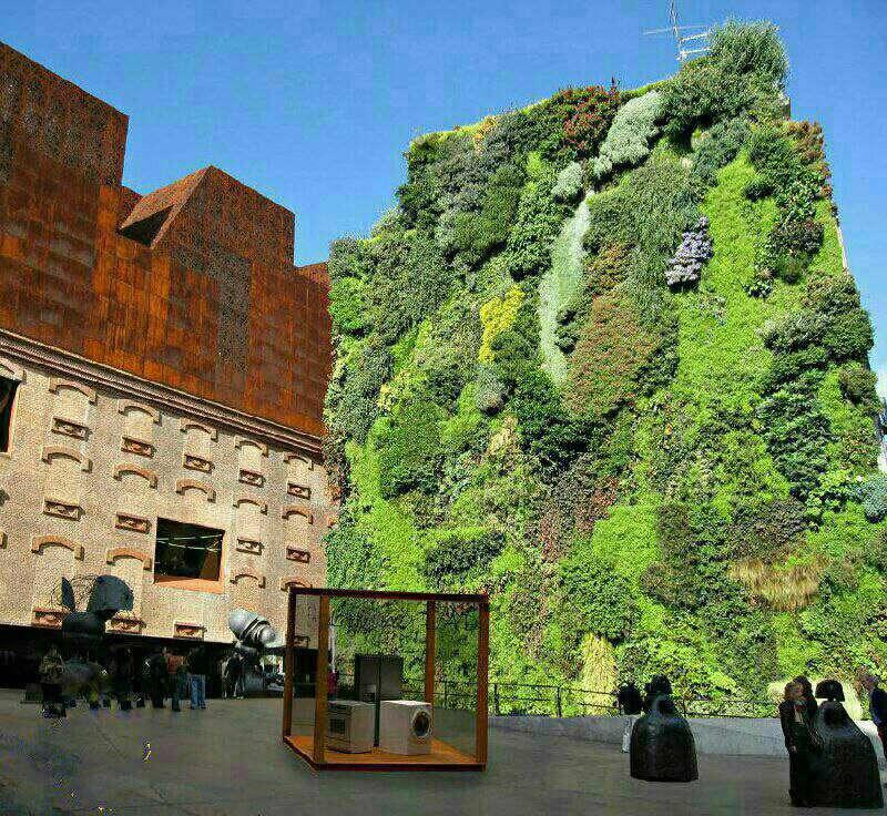 باغچه عمودی در شهر مادرید اسپانیا