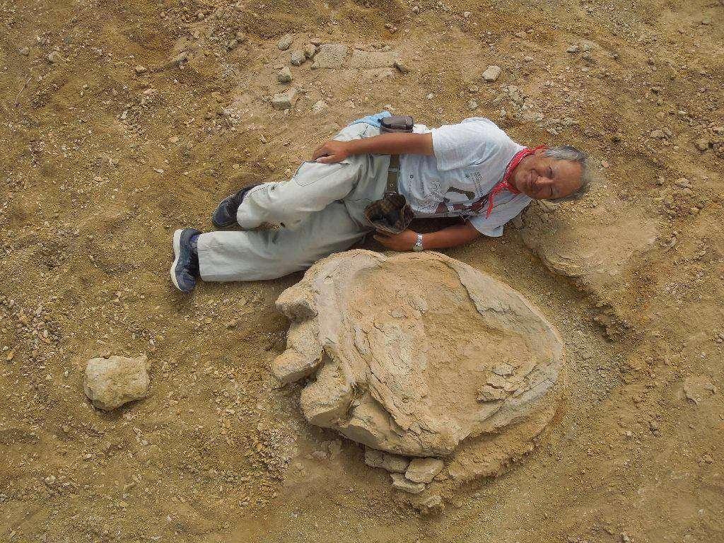 کشف یکی از بزرگترین ردپاهای دایناسوری در جهان