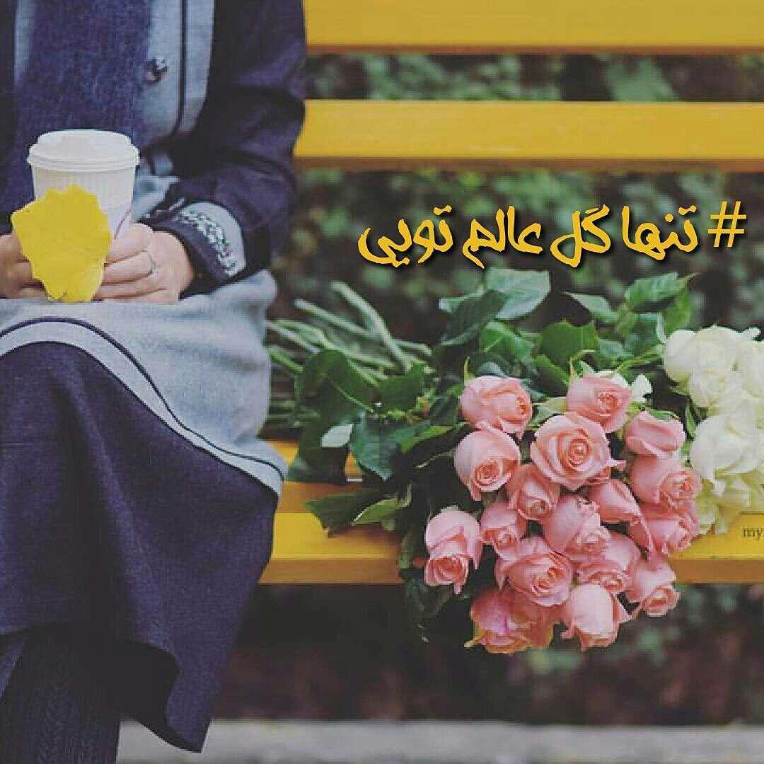 تنها گل ادم تویی
