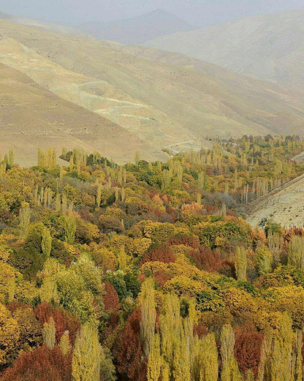 دهستان برغان