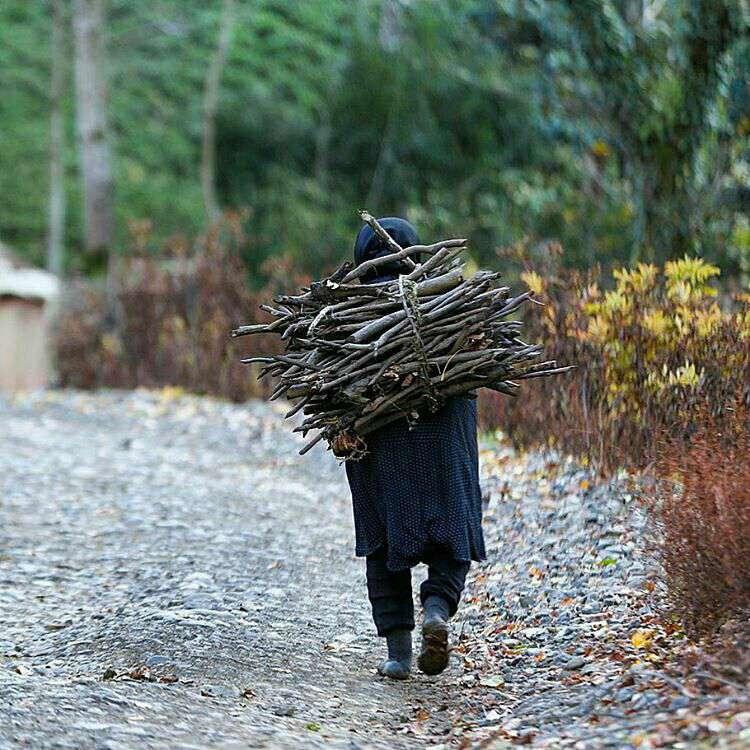 حمل هیزم توسط بانوی روستایی