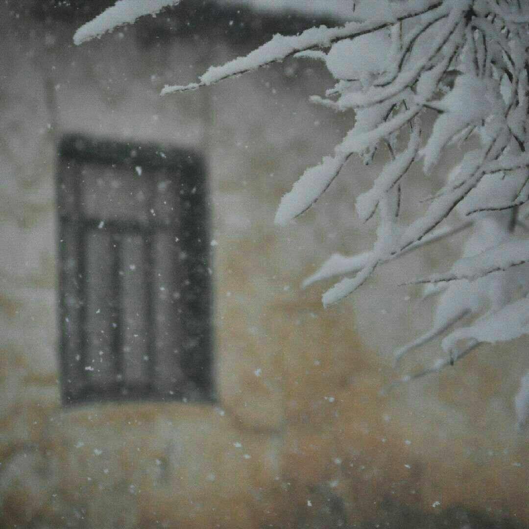 بارش برف در زمستان