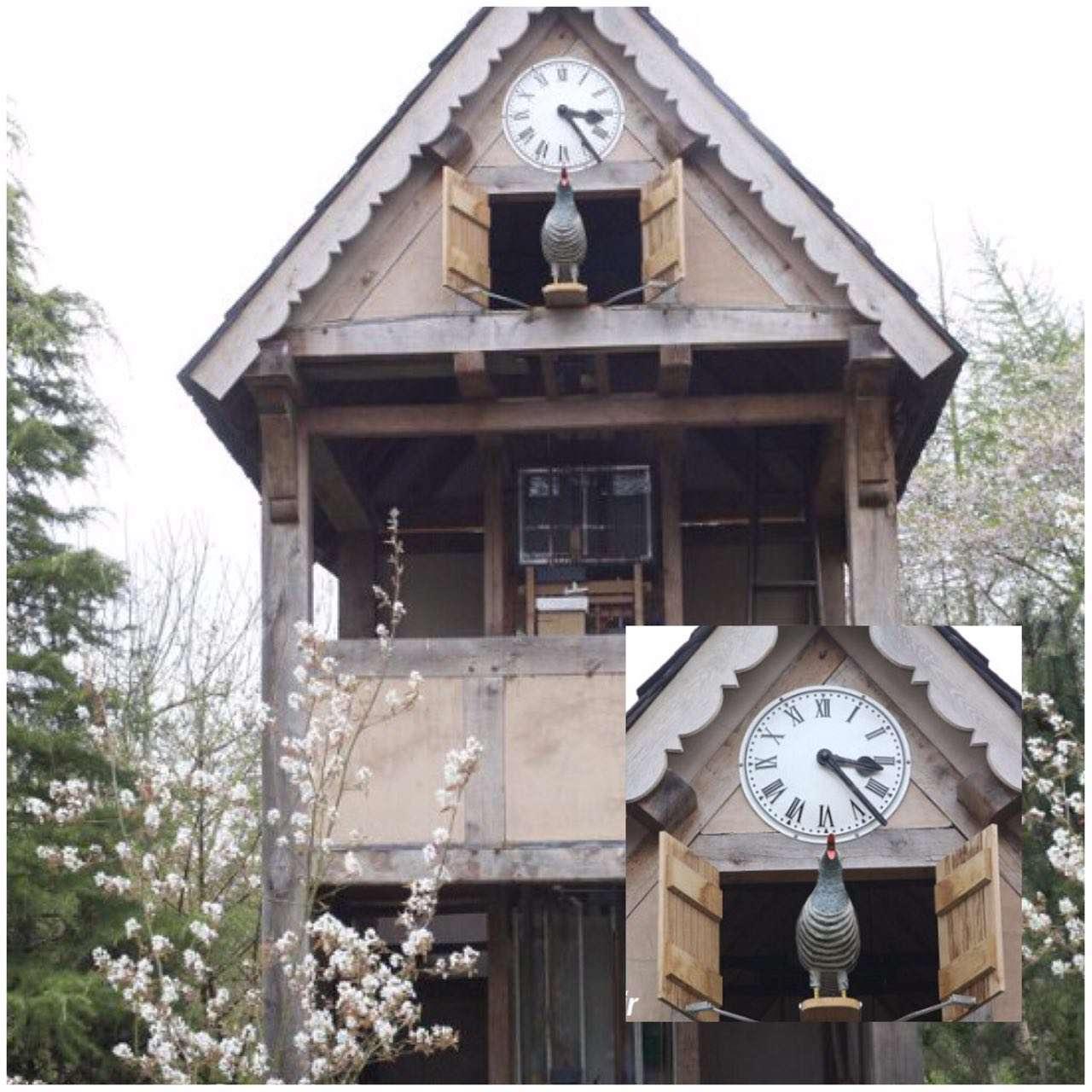 یک پیرمرد انگلیسی پس از 3 سال تلاش توانست بزرگترین ساعت کوکویی دنیا را بسازد.  این ساعت دقیقا به اندازه یک خانه واقعی وسعت دارد و 8 متر ارتفاع دارد
