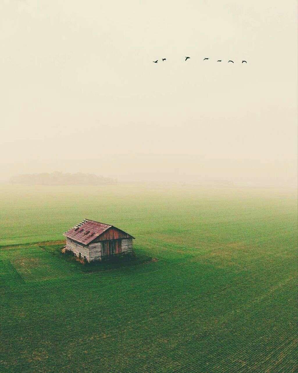 کلبه ای میان دشت سبز