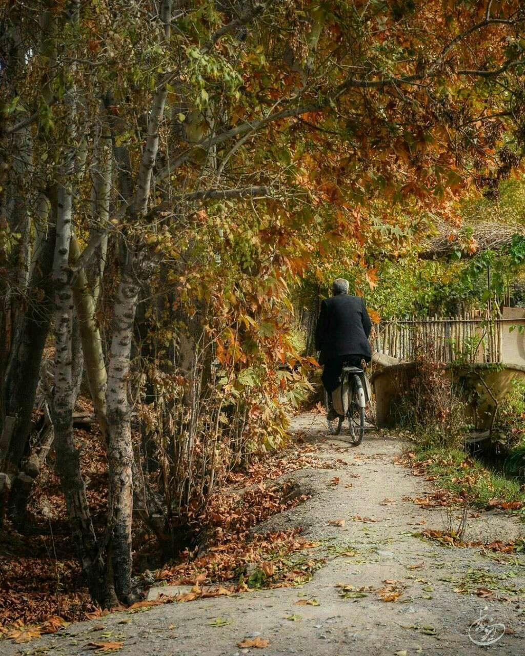 دوچرخه سواری در پاییز