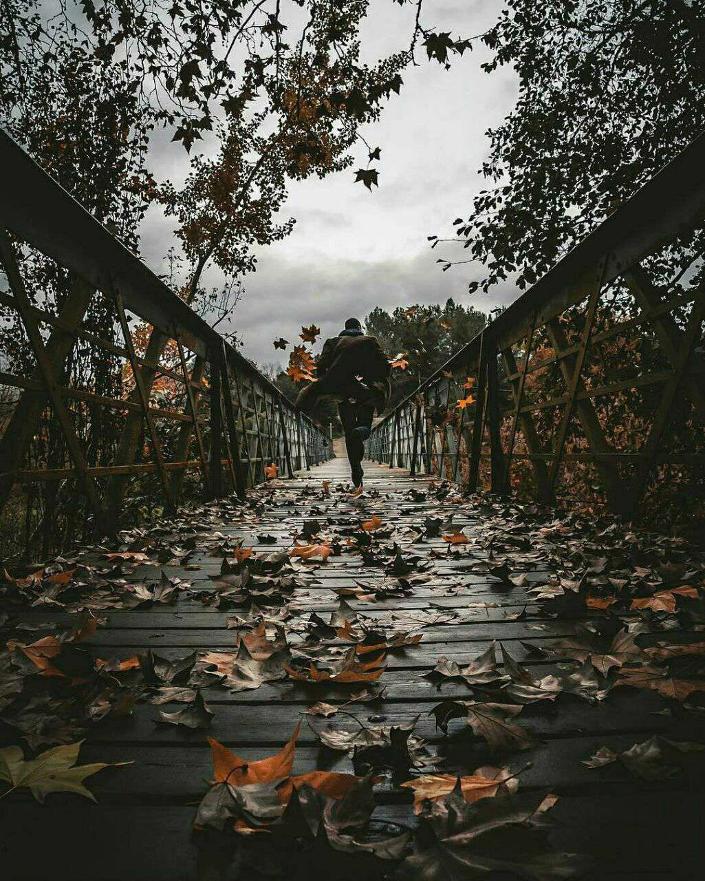 دویدن روی پل چوبی