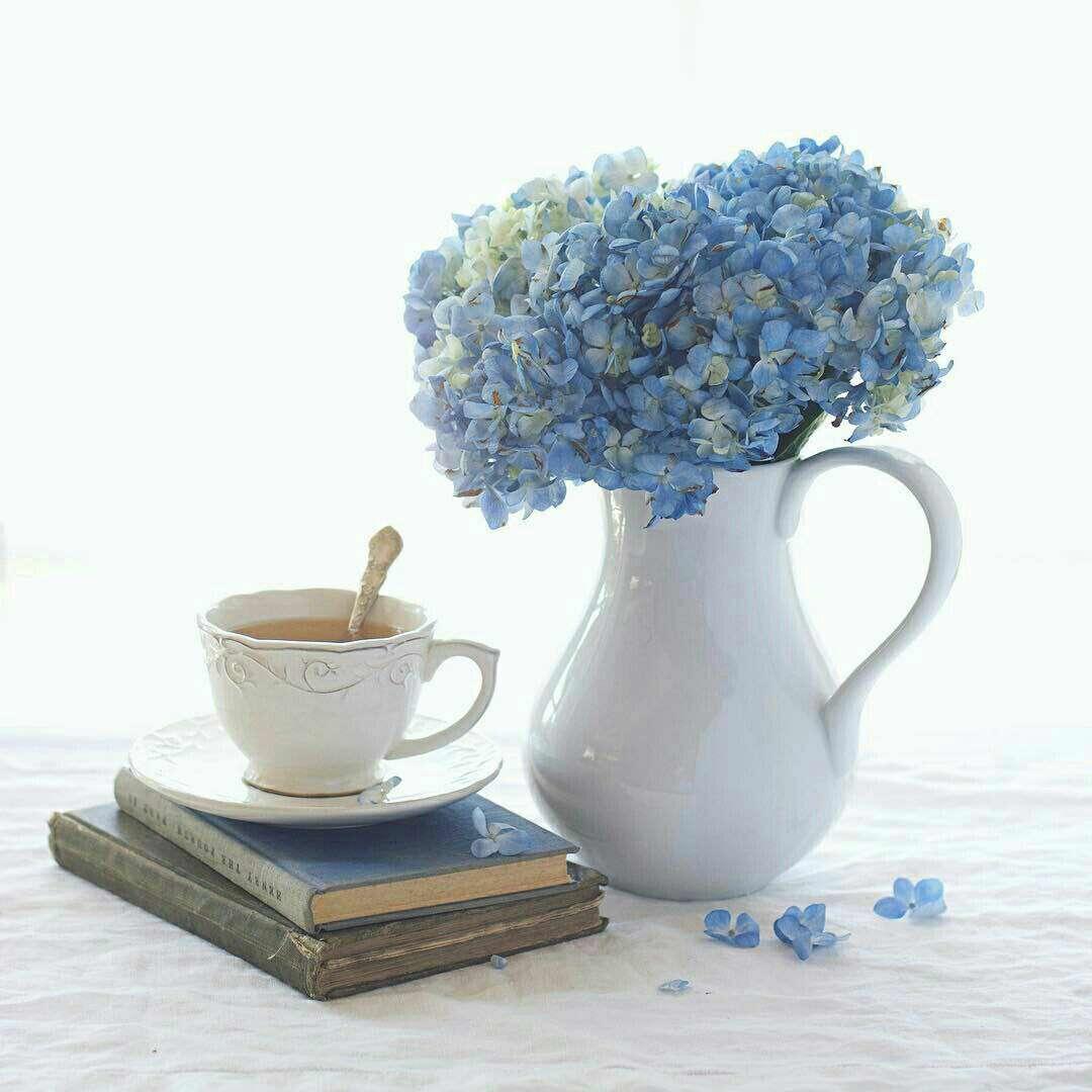 گلهای آبی