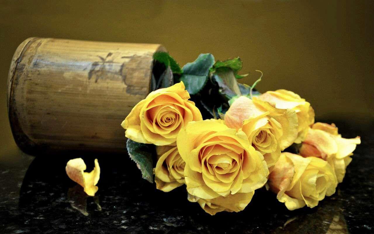 رزهای زرد