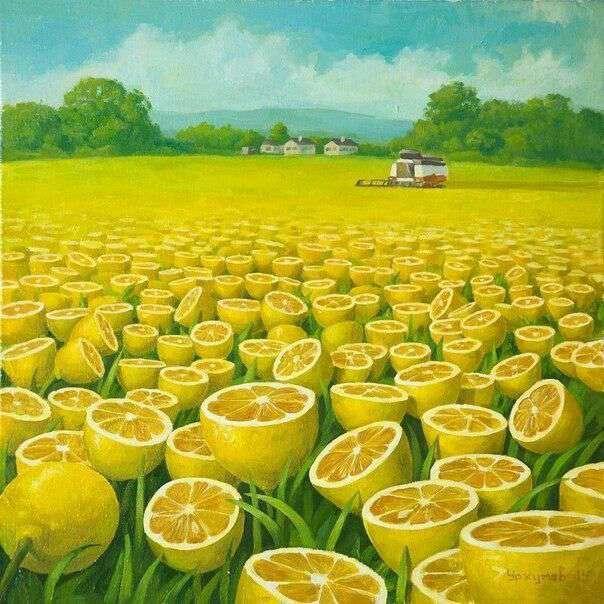 مزرعه لیمو
