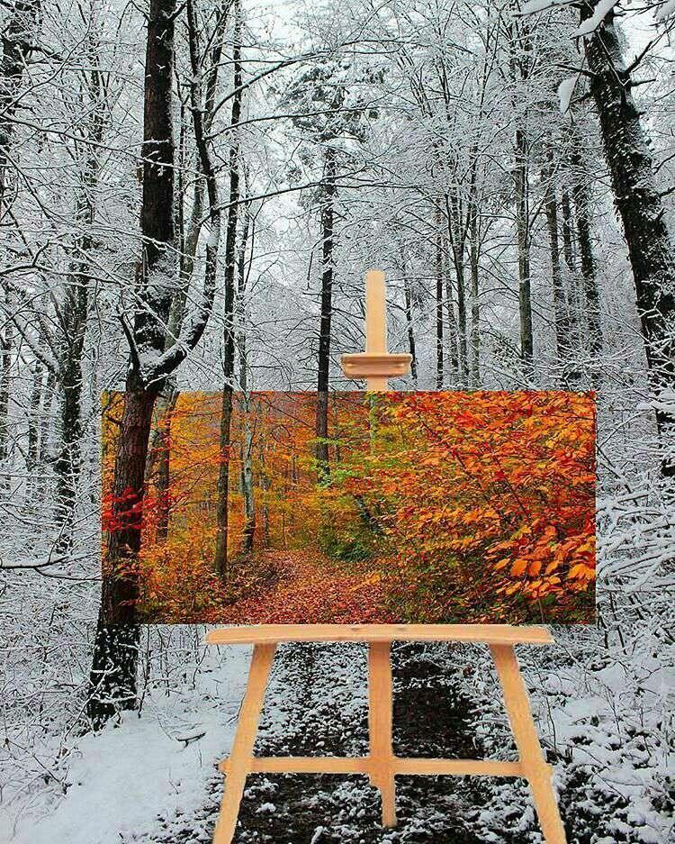 نقاشی پاییزی در زمستان