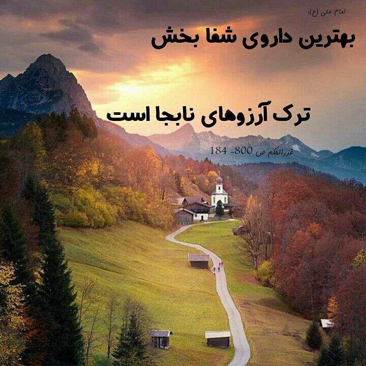 حدیثی از امام علی بهترین داروی شفا بخش