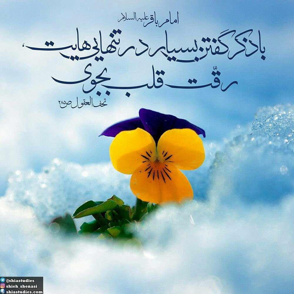 حدیثی از امام باقر در مورد ذکر گفتن
