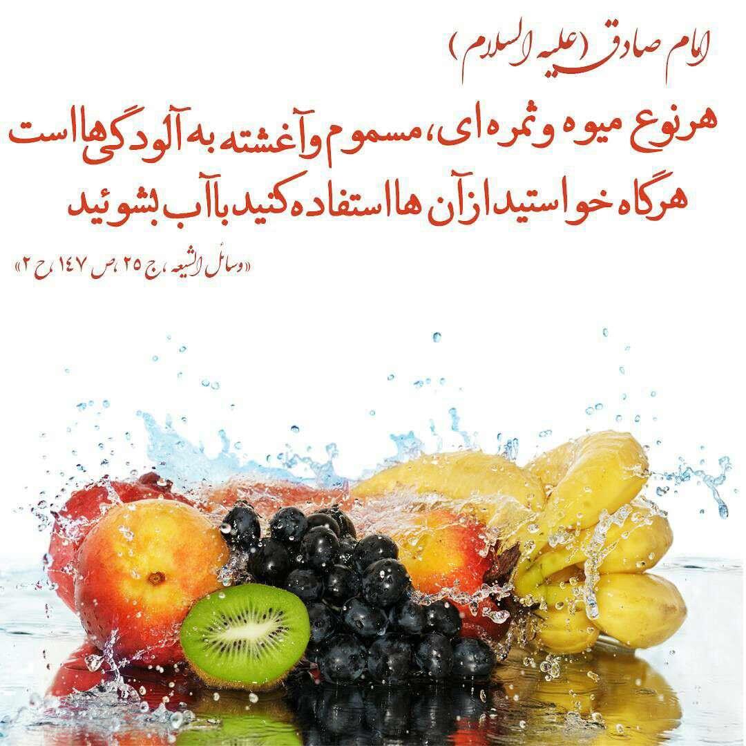حدیثی از امام صادق در مورد میوه وثمرات