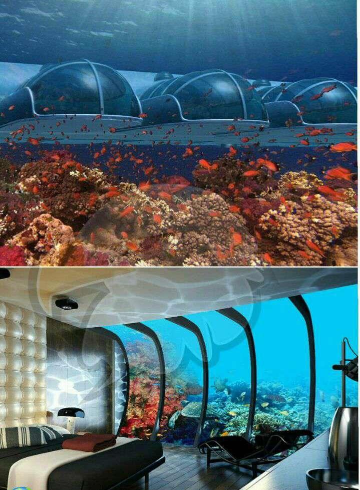 هتل پوزیدان در فیجی اولین هتل پنج ستاره است که در عمق 40 فوت زیر دریا ساخته شده، و مسافران این هتل حتی می توانند با دکمه ای که در اتاقشان تعبیه شده به ماهیها غذا دهند