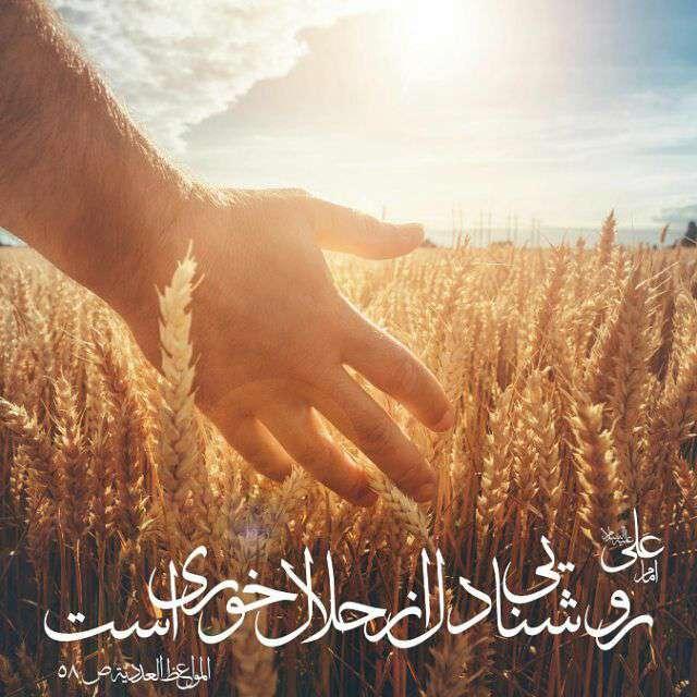 حدیثی از امام علی در مورد حلال