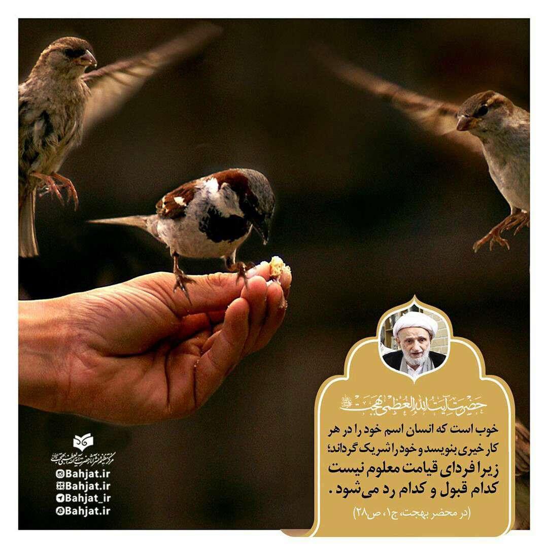 سخنی از ایت الله بهجت در کمک کردن