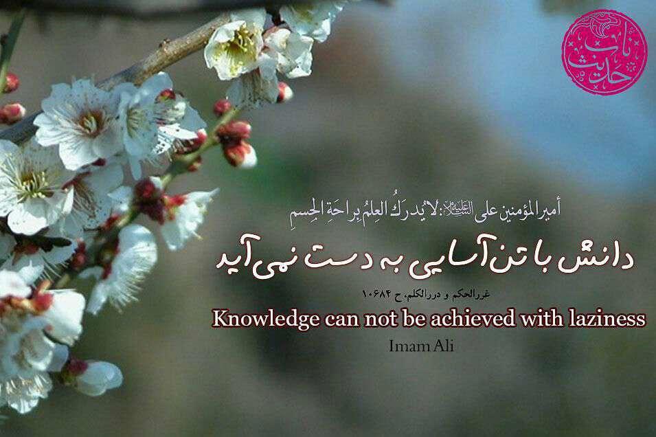 حدیثی از امام علی در مورد دانش