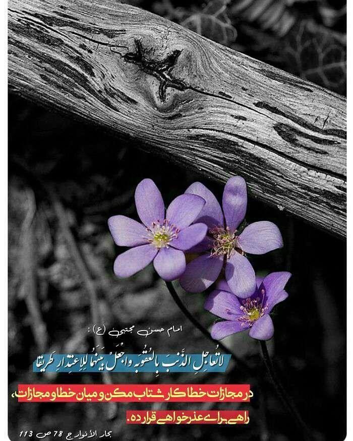 حدیثی از امام حسن مجتبی در مورد مجازات