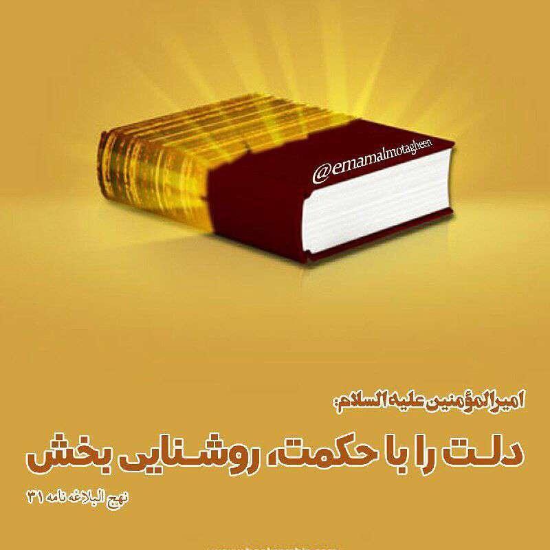 حدیثی از امام علی در مورد حکمت