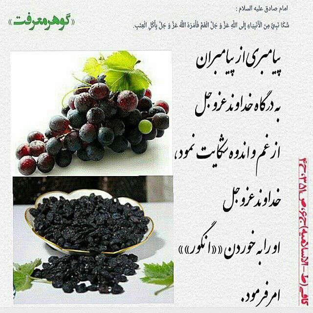 انگور درمان غم