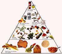 گروههای غذایی هرم