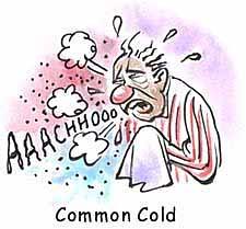 فردی که سرماخورده چه باید و چه نباید بخورد؟