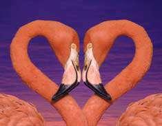 روز را با عشق شروع کنيد، با عشق سپري نماييد و با عشق به پايان ببريد