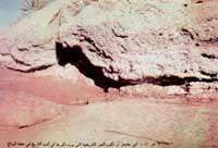 location of ghadir khumm