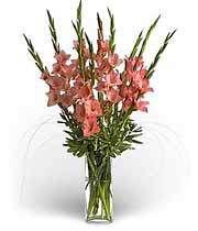 گل،هدیه ای از بهشت