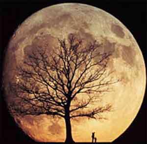 تمام صورتهای زیبای ماه