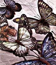 پروانه های  بی ادعا