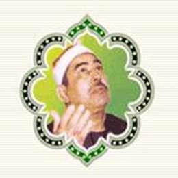 استاد محمد محمود طبلاوى