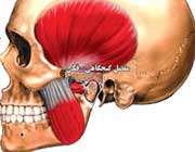 مفصل گیجگاهی-فکی