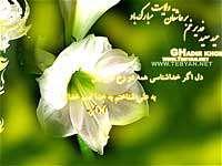 عید غدیر خم ، یا علی ، گل