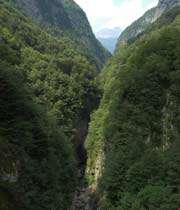 کوهستان سبز
