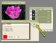 نحوه بهینه سازی فایلها با متغیرهای فشردهسازی