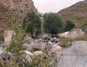 национальный парк лар