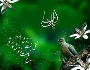 حضرت فاطمہ زہرا سلام اللہ علیہا