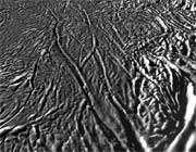 سطح انسلادوس