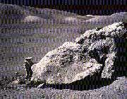 انسان در ماه