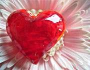 قلب و گل