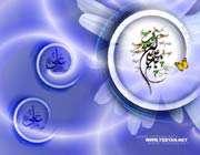 (**حضرت علی علیه السلام؛ مدهوش در عبادت**)