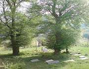 une cimetière