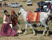 عشایر