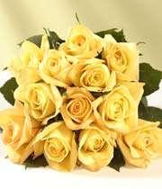 پیلا گلاب