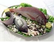 خواص ماهی و امگا 3 موجود در آن - Bitrin.com