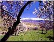 rûdbâr alamut'un doğal manzaraları